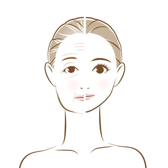 加齢を伴った女性のイラスト